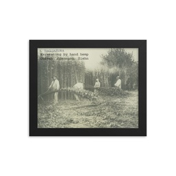 "Italian Hemp Farming Step #5 ""Tagliatura"" Framed"